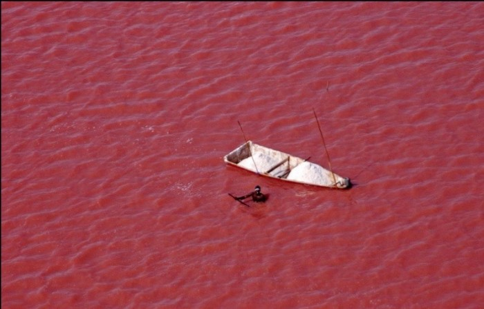 Sйnйgal le lac Retba (lac rose)